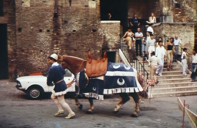 Palio Handler and Horse
