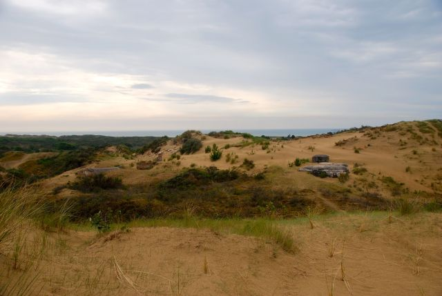 Sand Dunes in Camp