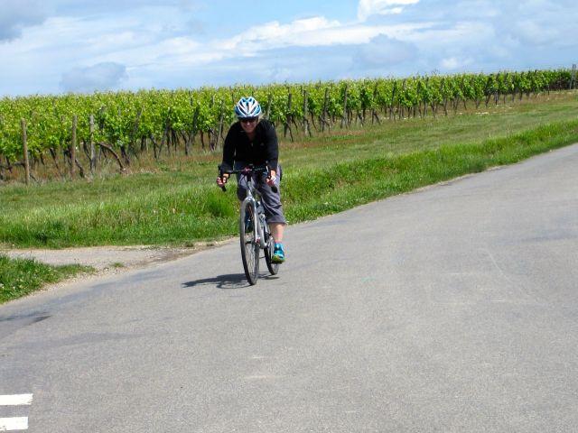 Joanna on the road to Jarnac