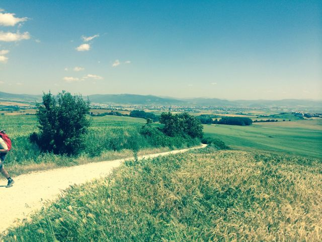 On the Camino, Pamplona in the background