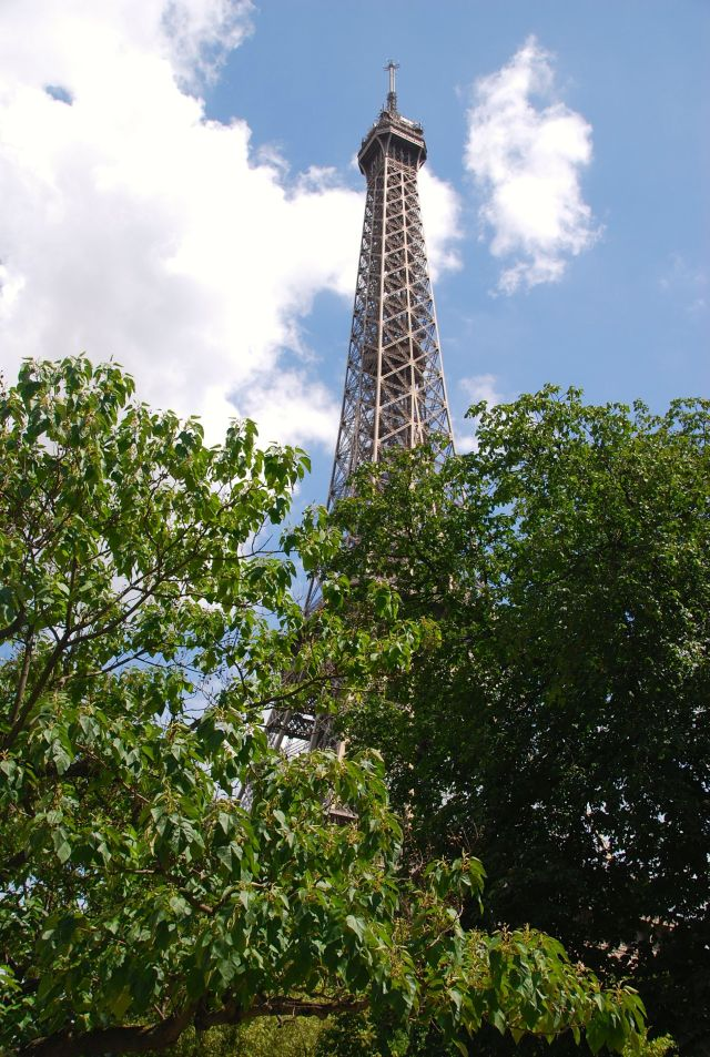 The Tower from My Milestone Spot