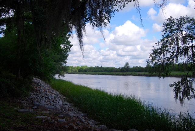 The Ashley River