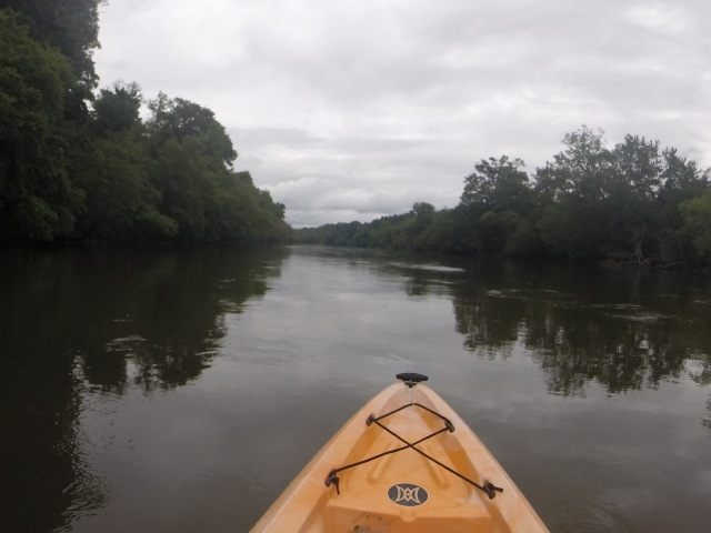 On the French Broad