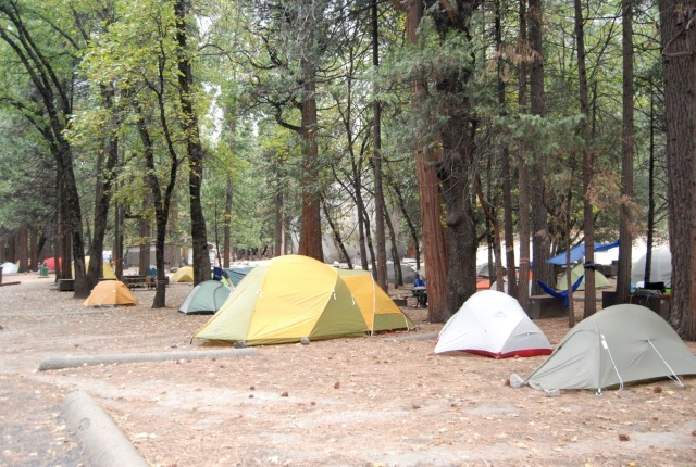 A Row of Tents at Camp 4