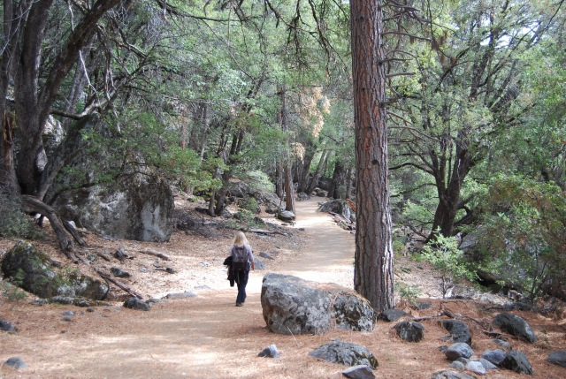 Hiking the Valley Trail