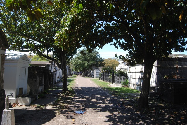 One of the Main Streets in the Cemetary