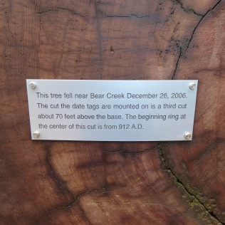Vistor Center Tree Plaque