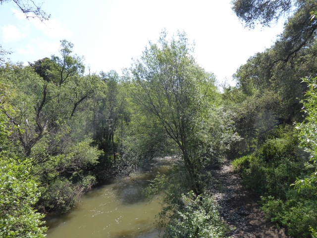 Indian Joe Creek