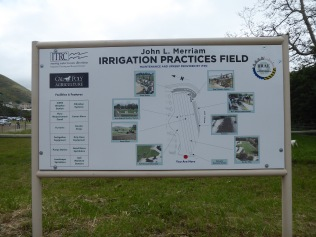 Irrigation Field at Cal Poly SLO