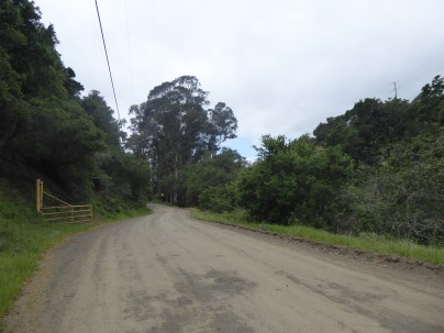 The Road In