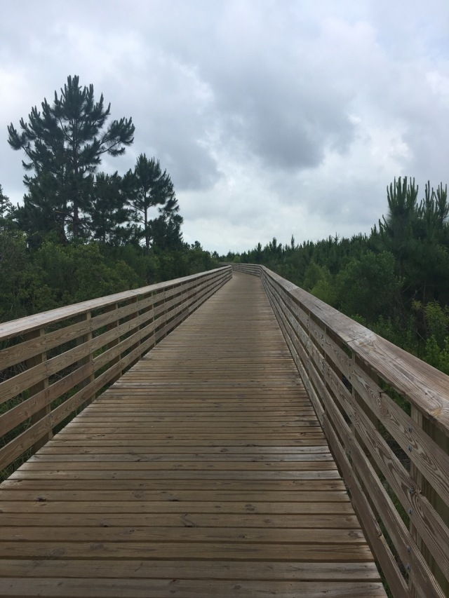Boardwalk at Gulf State