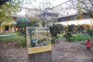 Van Gogh Walking Tour