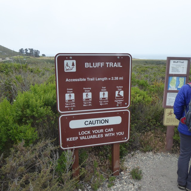 The Bluff Trail