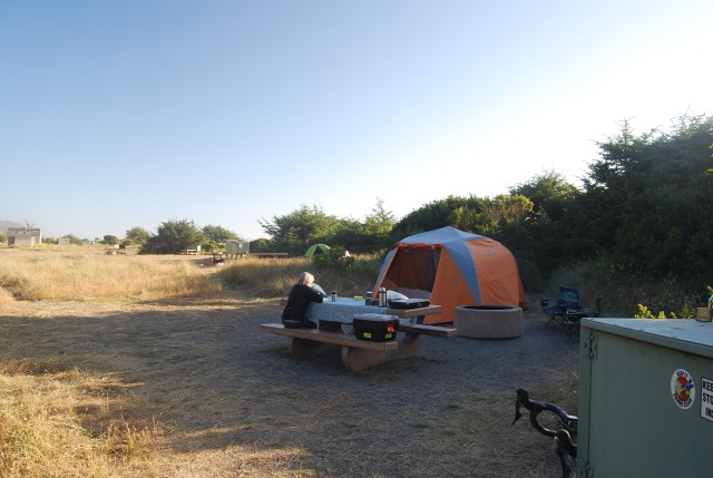 Campsite at Gold Bluffs Beach