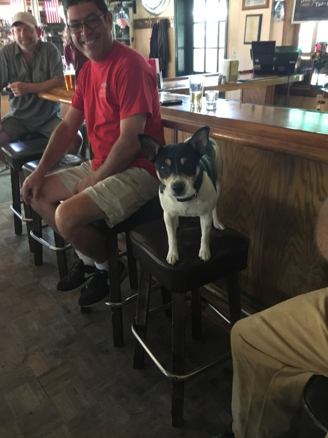 That Dog at Willowbrook Ale House