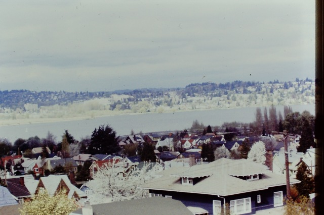 View from the House - 1979