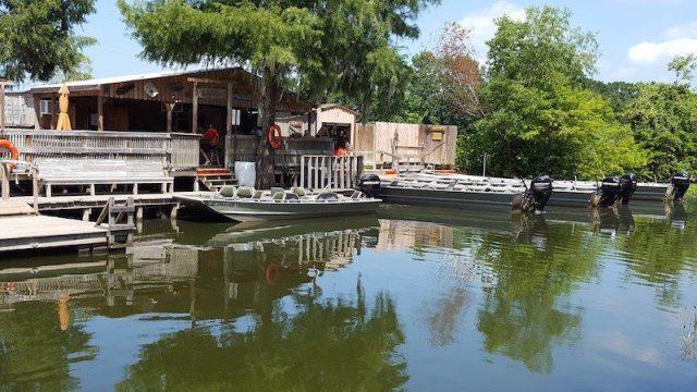 champagnes-swamp-tours-lake-martin-la-main-back-dock