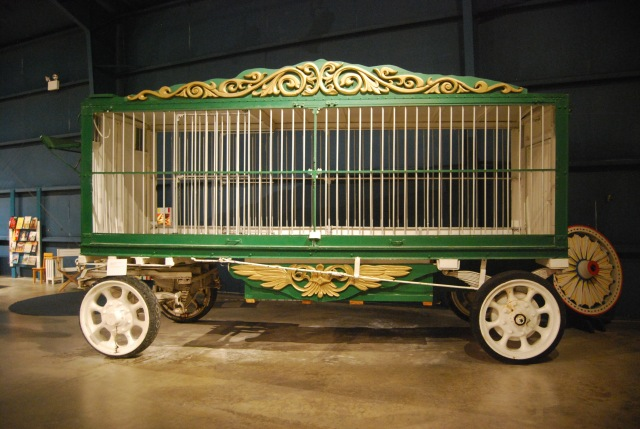 Animal Wagon