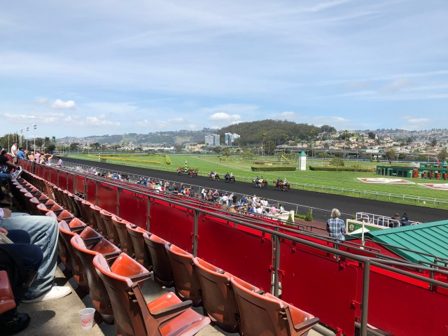 Gorgeous Day at Golden Gate Fields
