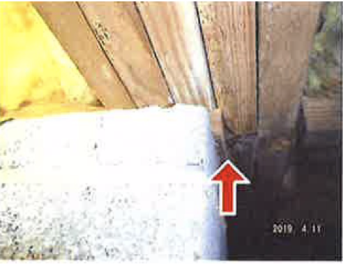 Crawlspace Repair Request