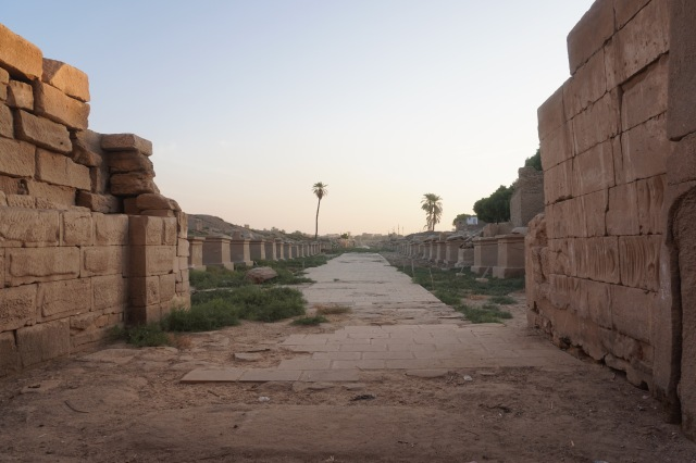 Columed Road to Luxor Temple