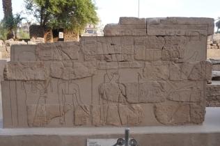 Dynasty XXX Wall Section