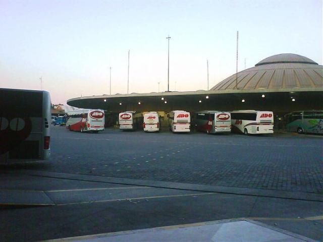 Buses Lined Up