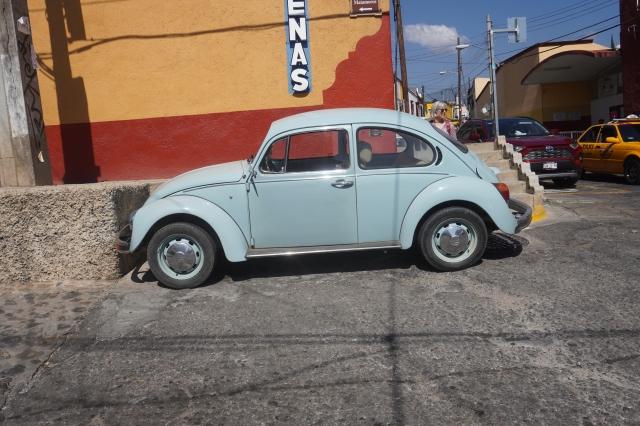 Bug at Azucenas