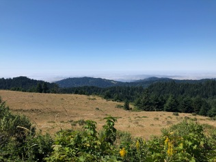 Panorama Left