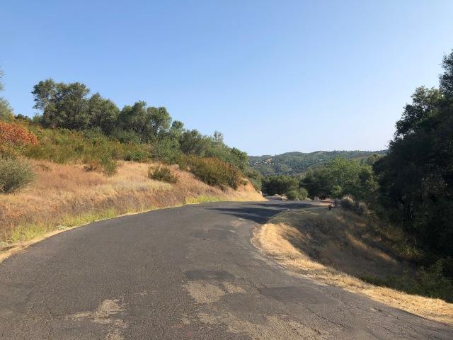 Heading up Sheep Ranch Road