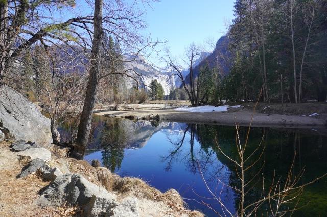 Creekside View